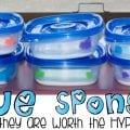 Glue sponges...they are worth the hype