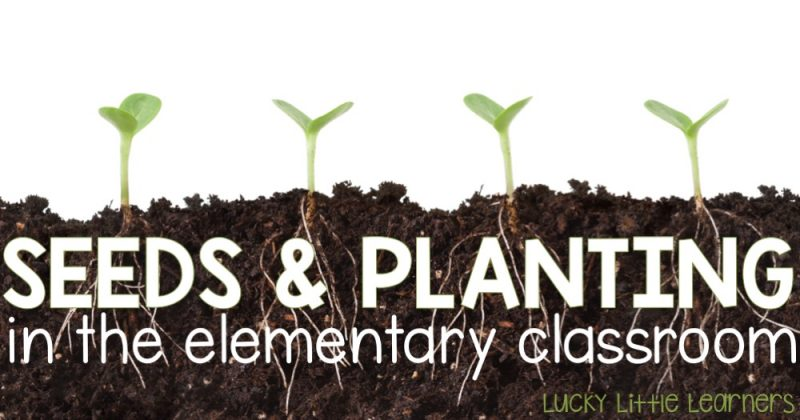 Seeds and Planting in the Elementary Classroom