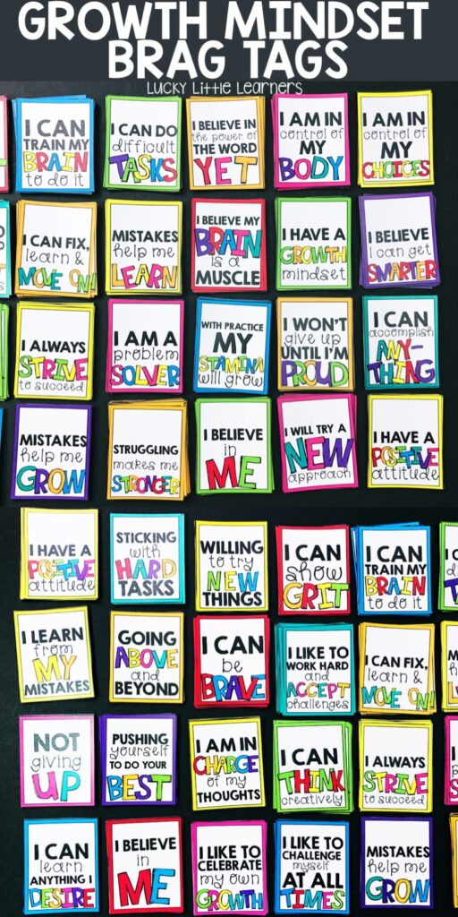 Inspire your students to take charge of their own learning with these growth mindset brag tag incentives! They help teach and reinforce to our students that their brains are a muscle that need to be trained and worked. With hard work, determination, mistakes, and grit, they can achieve big things!