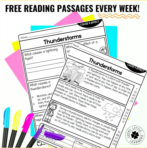 2nd Grade Reading Comprehension Passages - Lucky Little Learners