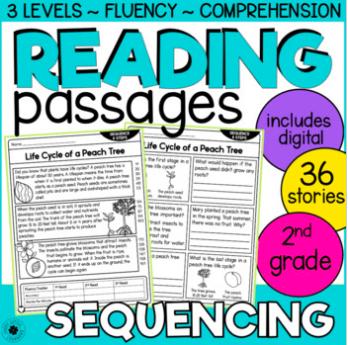 summarizing 2nd grade reading passages