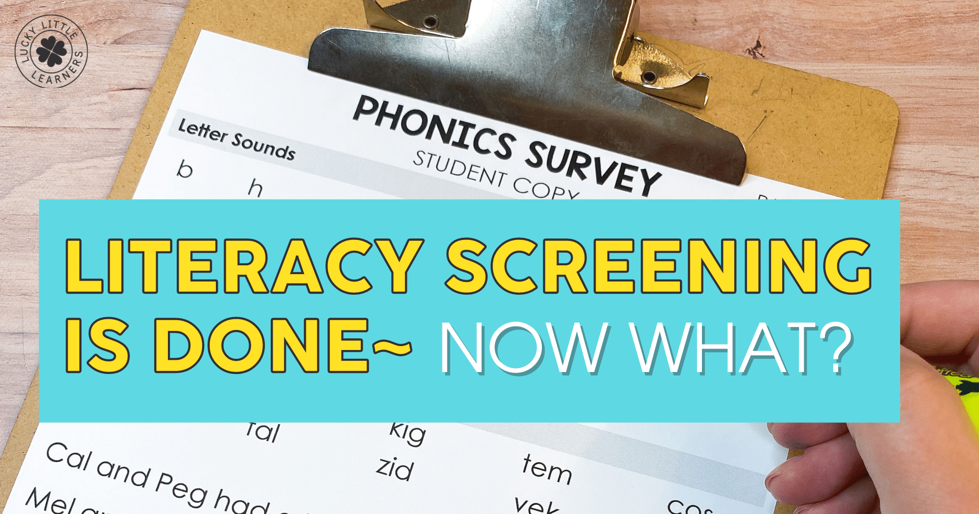Literacy Screening is Done ~ Now What?!