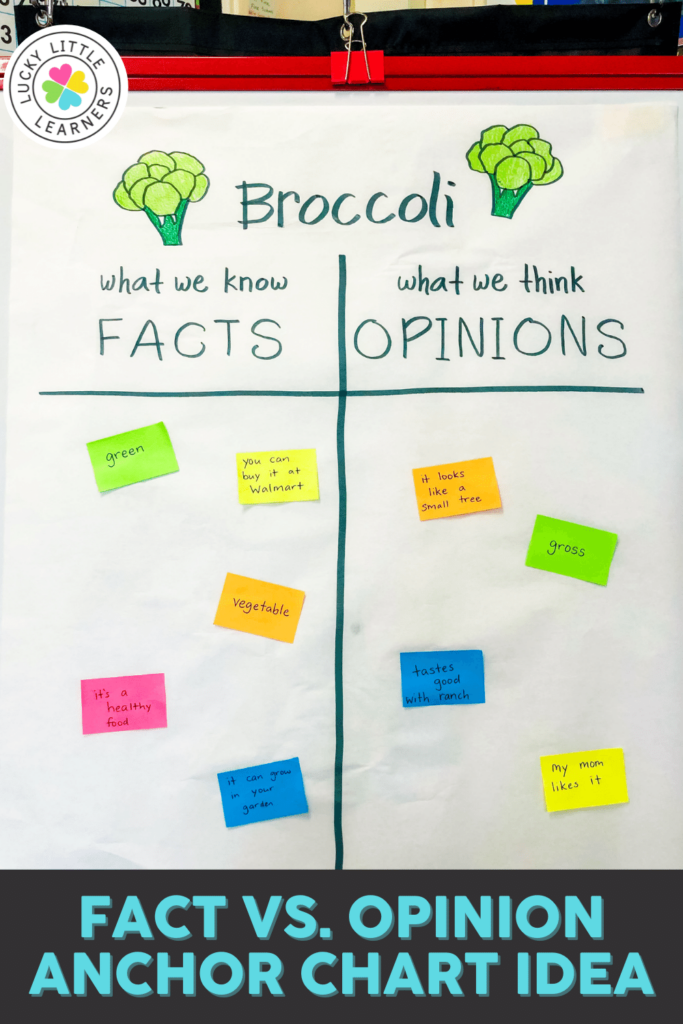 broccoli fact versus opinion anchor chart to practice the difference between a fact and an opinion